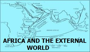 TOPIC 3: AFRICA AND THE EXTERNAL WORLD | HISTORY FORM 2