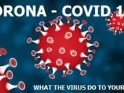 12 Things That Corona Virus Do To Your Body