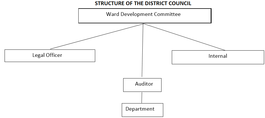 District Governement