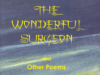 The Wonderful Surgeon By Charles Mloka