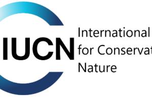 Nafasi za Kazi at IUCN Tanzania Driver
